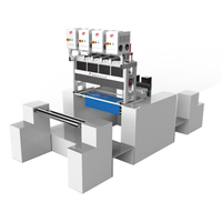 Double&Four Head Easy Tearing Line Laser Marking Machine